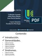 Ponencia (wecompress.com).pptx