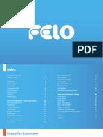Felo Process Book