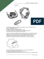 QUESTAO_modelo_SprWeb_300610 (1).doc