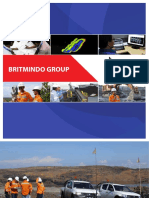 britmindogroupcompanyprofile.pdf