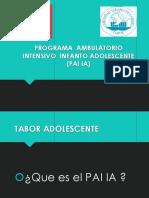 PRESENTACIÓN PAI IA.ppt