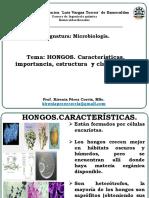 Conf 5 Hongos. Estructuras