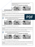 FICHA 06 Características SV Estímulos.docx