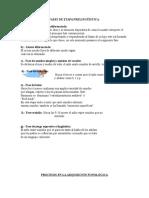 FASES DE ETAPA PRELINGÜÍSTICA.doc