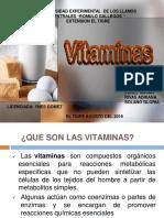 DIAPOSITIVA de Vitaminas y Minerales