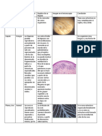 Informe_biologia