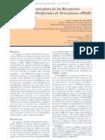 proliferador-peroxisomas