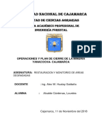 Informe de Mineria Yanacocha