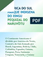 AMERICA DO SUL, PARQUE INDIGENA DO XINGU E PEQUIZAL DO NARUVÔTU III.pptx