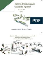 2011_Fabricacao_Celulose_Papel.pdf