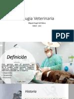 Cirugia Veterinaria