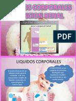 Liquidos Corporales y Funcion Renal