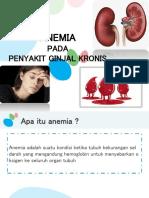 Anemia Pada Penyakit Ginjal Kronis