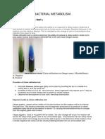 Bacterial Metabolism Group 11