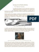 Charango de los pueblos andinos.pdf