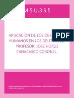 Aplicacion de Los Derechos Humanos en Los Delitos Esterilizacion f. s.5 a.2 m.5 Grlh