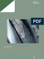 1. Ramos Técnicos.pdf