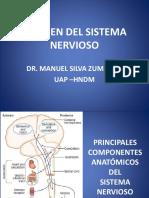 1.Examen Del Sistema Nervioso