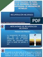 1era Semana Recuperacion Mejorada.pdf