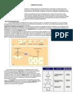 Guía de Osmorregulación