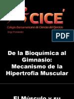 De La Bioquímica Al Gimnasio OFW