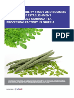 Model-Business-Plan-for-Moringa-Processing-to-Tea.pdf