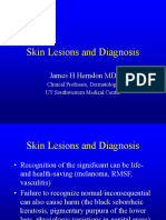 Skin Lesions and Diagnosis.ppt