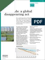 Factsheet3 Global Disappearing Act 0