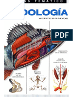 Zoologia Vertebrados - Luis Blas Aritio.pdf