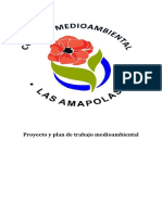 Plan Medio AmbientaL CON PROYECTO