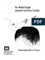 Bald Eagle Activity Guide.pdf