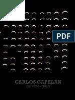 CARLOS CAPELÁN XVIII PREMIO FIGARI