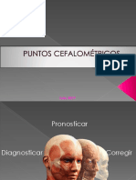 Puntos Cefalométricos