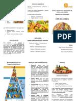 Dieta Balanceada_ Piramide Nutricional & Alimentos - Folleto