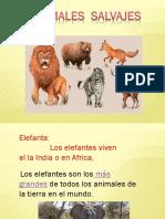 presentacion animales salvajes 6to erwin.pptx