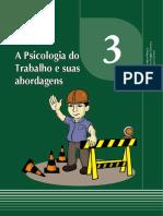 Psicologia Do Trabalho Aula_03