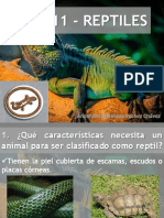 pdfslide.net_reptiles-especialidad-desarrollada-club-de-conquistadores.pdf