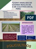 Exposicion Agroecología