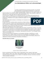 27 Revisión de La Aloe Vera (Barbadensis Miller) en La Dermatología Actual