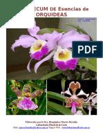 Orquídeas. (1)