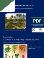 Expo Paleontología.pdf