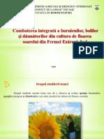 Combaterea integrată a buruienilor, bolilor și dăunătorilor din cultura de floarea soarelui din Fermei Ezăreni, Iași