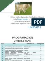 Clase 1. Anatomia Fisiologica Del Aparato Reproductor Masculino.2015.