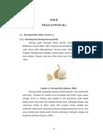 Teori dasar bawang putih