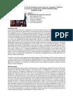 G4. Informe Final