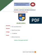 SPLINE-CUBICO_ROJAS-PACHAS-WUBER_FIC.docx
