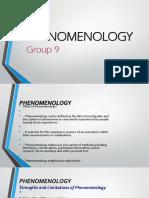 Phenomenology Report