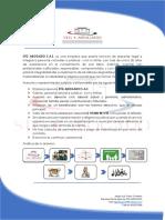 PLANTILLA STG ACTUALIZADA.docx