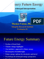 Future Energy Evolution - Thomas Valone, 2010