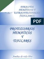 Parasitos Hemáticos y Extraintestinales (Tisulares) 2